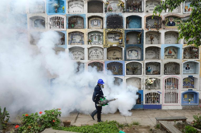 Ouderwetse muggenbestrijding met gif. Beeld AFP