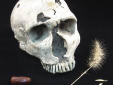 Eten met de Romeinen: 'Merg uit botten geeft saaie pap ook een opkikker'