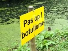 Dode dieren: visvijver Hulsbeek Oldenzaal dicht vanwege vermoeden botulisme