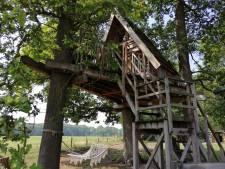 Een nachtje slapen in de boomhut van Erve Veldink in Haarlo
