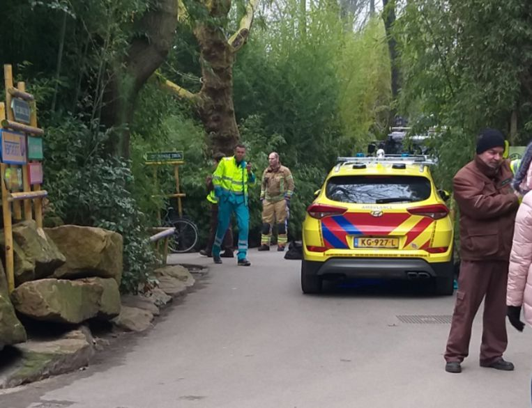 Het kind werd met nek- en rugklachten naar het ziekenhuis gebracht.