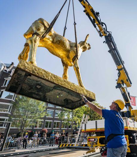 Corona of niet: Nederlands Film Festival gaat gewoon door