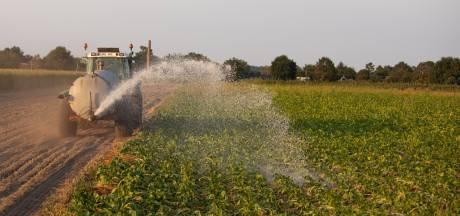 Wilde ideeën over water en droogte : 'Hard nodig in de Achterhoek'