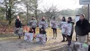 """Grote georganiseerde drukjacht in natuurgebied De Teut: """"Preventief acht everzwijnen geschoten om groei te beperken"""""""
