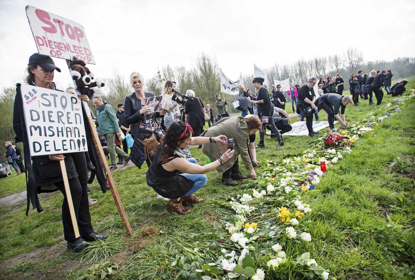 Protest in het Flevolandse natuurgebied, bloemen voor dieren die volgens actievoerders omkwamen van de honger.