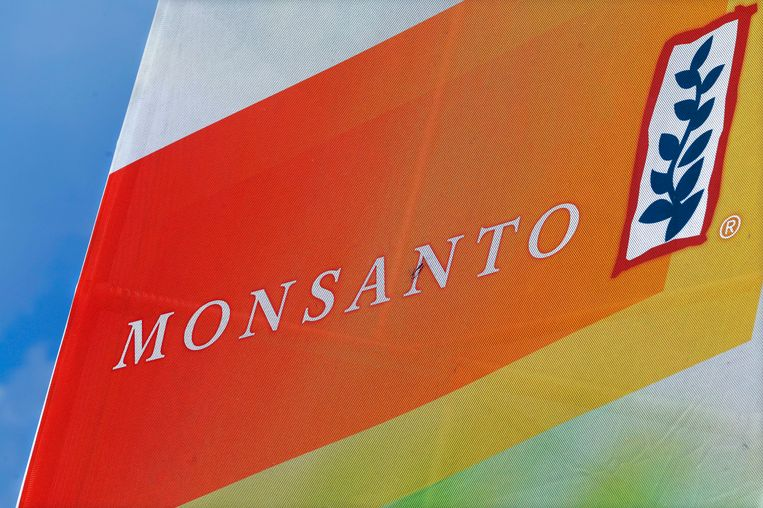 Het logo van Monsanto. Beeld AP