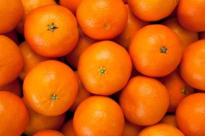 Fruittransporteur Mooy met vestiging in Breda is failliet