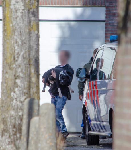 Negen honden in beslag genomen in Tilburg na bijtincident