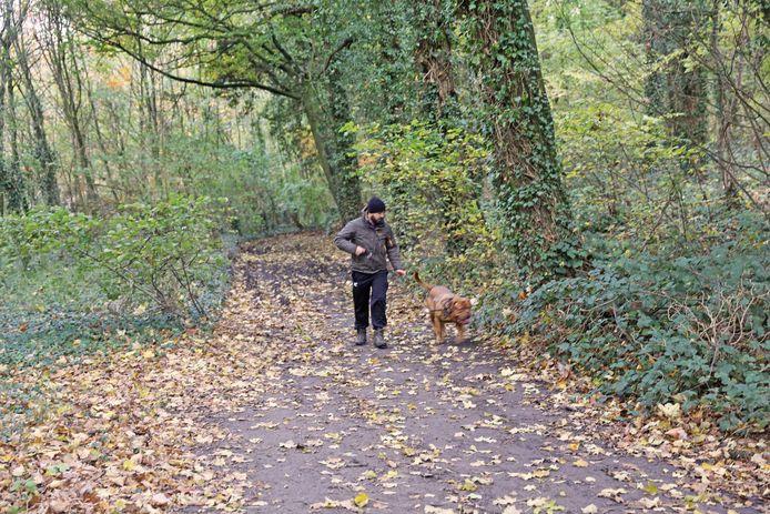 Met de hond wandelen in het Kravaalbos is wel nog toegelaten. Tenminste, als het dier aan de leiband wordt gehouden.