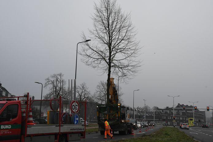 De boom wordt naar de juiste plek gereden.