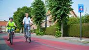 Gemeente zoekt vijftig gezinnen die elektrische fietsen willen testen