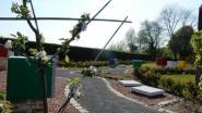 Stormschade op begraafplaatsen