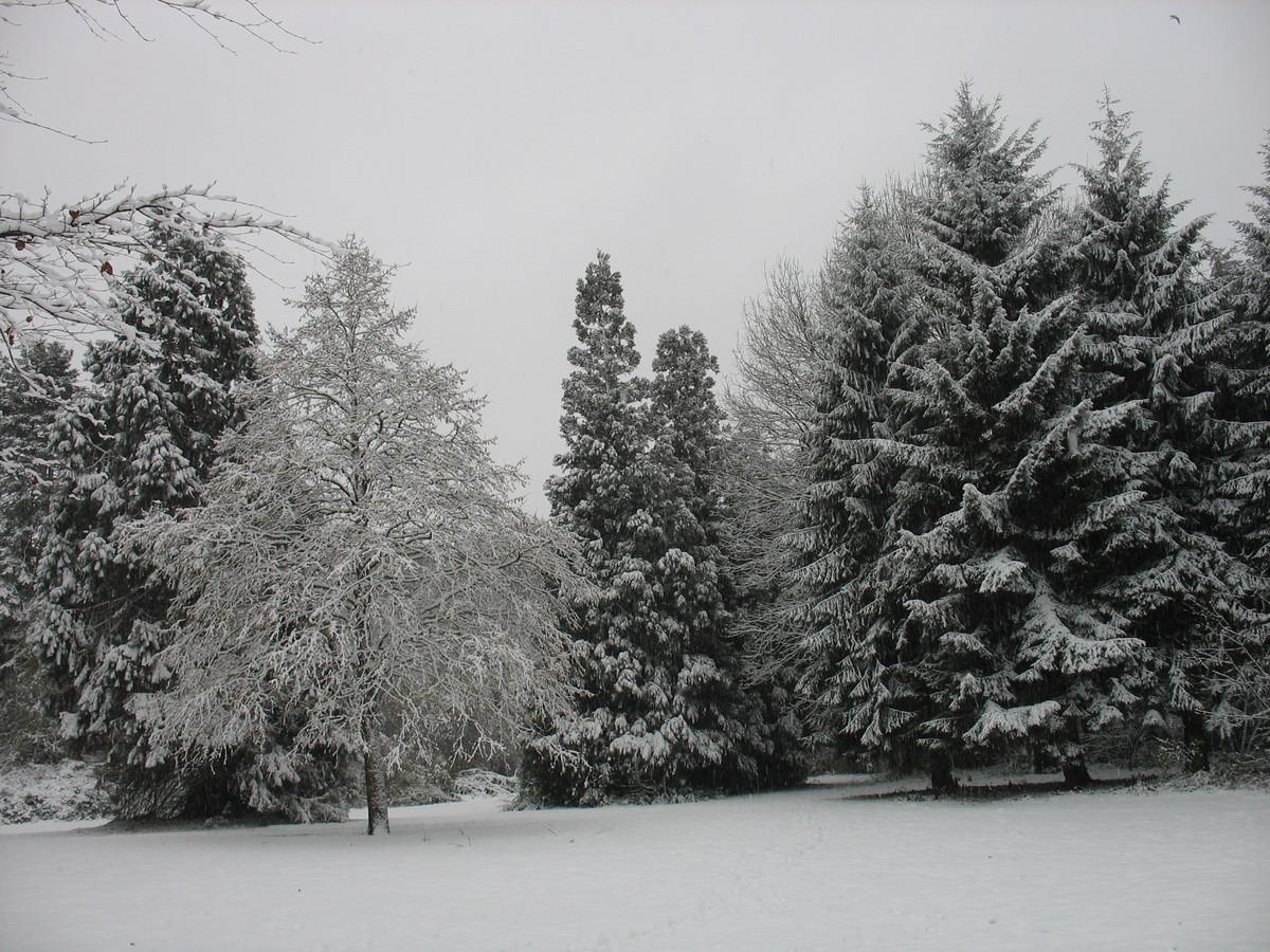 Het Von Weberpark in Tilburg-Noord ligt er prachtig bij!