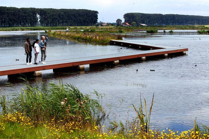 In de Nieuwe Dordtse Biesbosch wandel je over stalen roosters boven het ondiepe water.