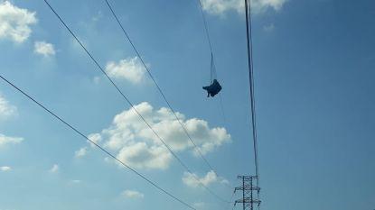 Verdwaalde paraglider gered uit elektriciteitslijnen in Venezuela
