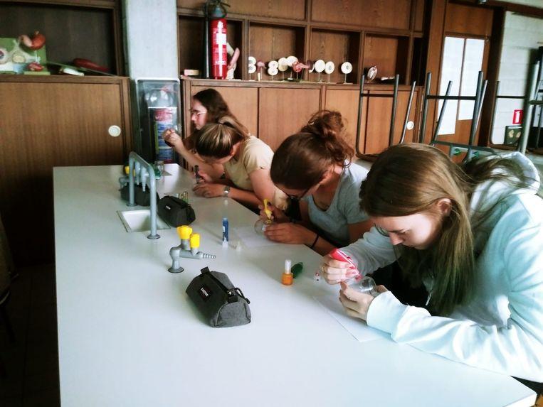 De leerlingen van het Atheneum in Denderleeuw maken een eigen terrarium.