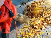 Zelfs de bospaden blaast de bladblazer bladvrij