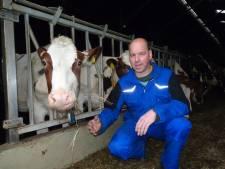 Het Schijndel van... Anton van den Broek: 'Zonde dat Schijndel Schijndel niet meer is'