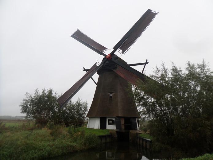 De Oude Doornse molen