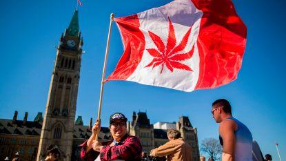 Definitief: marihuana vanaf 17 oktober legaal in Canada