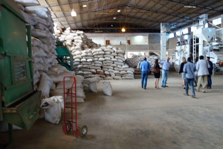 Bezoek aan dopslagloods en verpakkingsfabrike van Yibelu Mossiewa in Addis Abeba. Derde van links: Eric Daniëls. Beeld wb