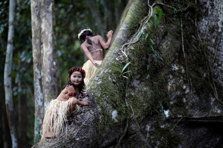 Deze jonge leden van de Shanenawa-stam in de Braziliaanse Amazone vragen tijdens een ceremonie bij een monumentale sumaumaboom om een einde aan de hevige bosbranden in het gebied. Beeld REUTERS