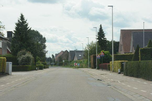 In het eerste deel van de Snoeckstraat lag al een fietspad maar dit zal eveneens worden opgebroken en vervangen.