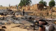 Bijna 300 Boko Haram-strijders gedood bij offensief in Niger