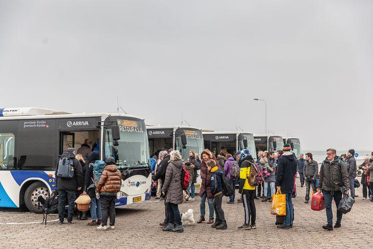 De bussen bij de veerboot van Schiermonnikoog. Beeld null
