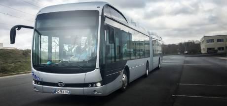 Toch geen herkansing regionale busfabrikanten VDL en Ebusco voor megaorder