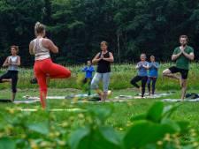Yoga tussen de snijbonen, pompoenen en maïs