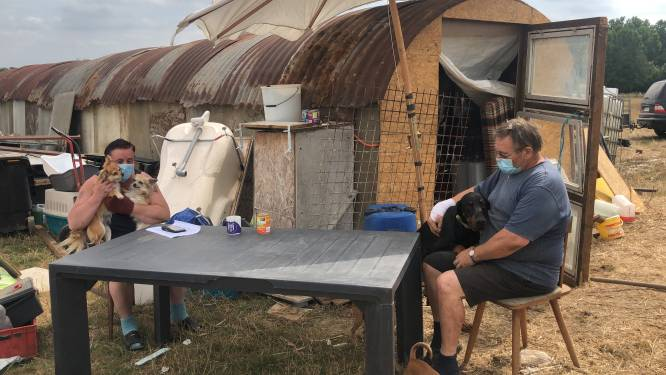 Nog steeds geen oplossing voor koppel dat op veld woonde in Boutersem