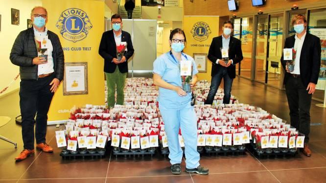 Lions Club zet medewerkers Sint-Andriesziekenhuis in de bloemetjes met 800 kerststerren