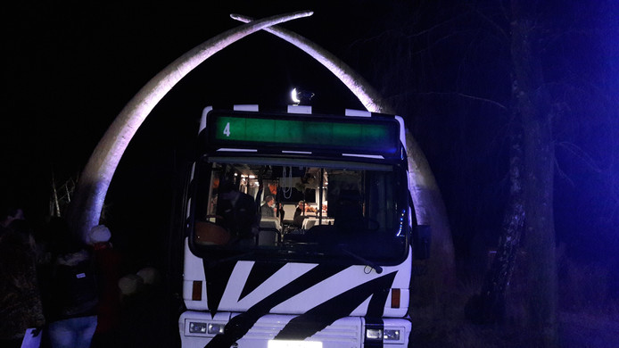 De bus voor de nachtsafari in de Beekse Bergen.