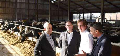 Speciale aanpak voor boeren in Sint Anthonis: 'Laat die niet verloren gaan'