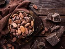 Manger du chocolat noir pour réduire les risques de dépression