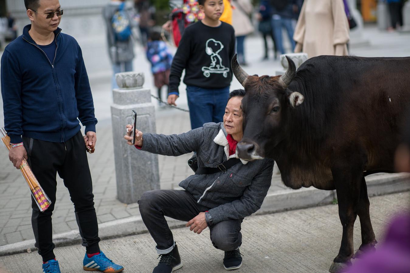 Citaten Zoon Hongkong : Deze foto s moet je gezien hebben ad