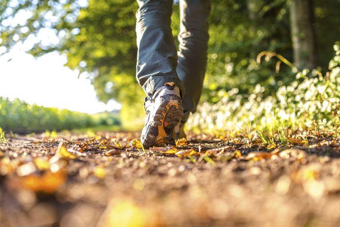 Wandelen, het liefst in de natuur, werkt bij werkstress.