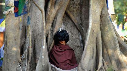 Populaire 'reïncarnatie van Boeddha' blijkt verkrachter