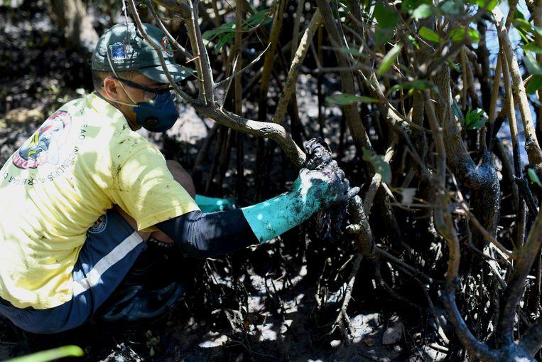 Een vrijwilliger probeert de olie te verwijderen bij een mangrove op het Imbassai strand in Mata de São João in de staat Bahia. Beeld REUTERS