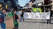 25-tal betogers op eerste Geelse klimaatmars