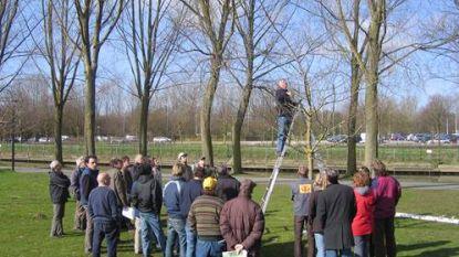 VELT en Omer Wattez geven snoeiles in Martinuspark