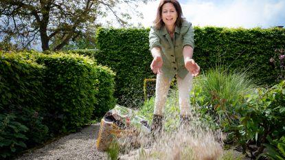 Bye bye onkruid: onze experte toont hoe je zelfs de hardnekkigste soorten uit je tuin weert