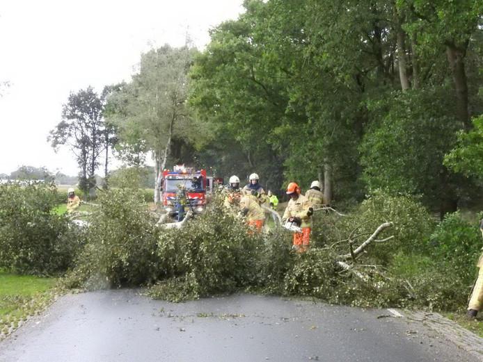 De brandweer Hardenberg druk met het verwijderen van een omgewaaide boom.
