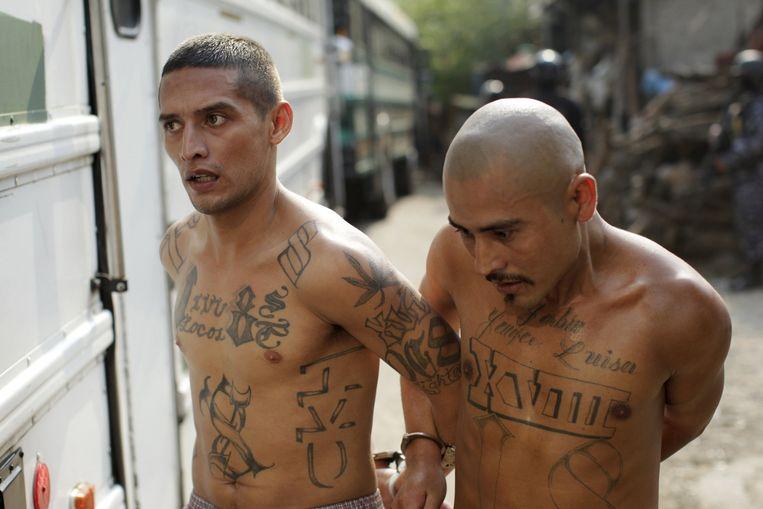 Gearresteerde leden van een bende in El Salvador. Beeld null