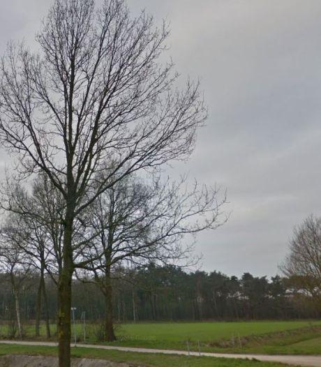 Heibel over plek zonnepark Notter-Zuna: 'Wat het oplevert komt op één, wij staan op twee'