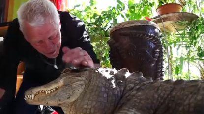 VIDEO. Van krokodillen tot slangen: Fransman heeft 400 reptielen in huis