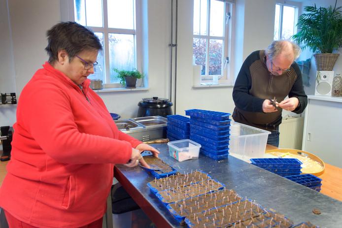 Werken bij de Grote Bredelaar. Liesbeth uit Huissen maakt aanmaakblokjes van zaagsel en kaarsvet, Luciano uit Arnhem knipt de lonten.