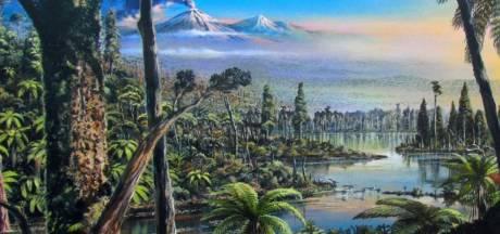 Les traces d'une forêt tropicale en Antarctique découvertes par des scientifiques