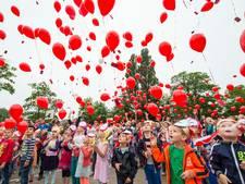 Montferland ontmoedigt oplaten van ballonnen